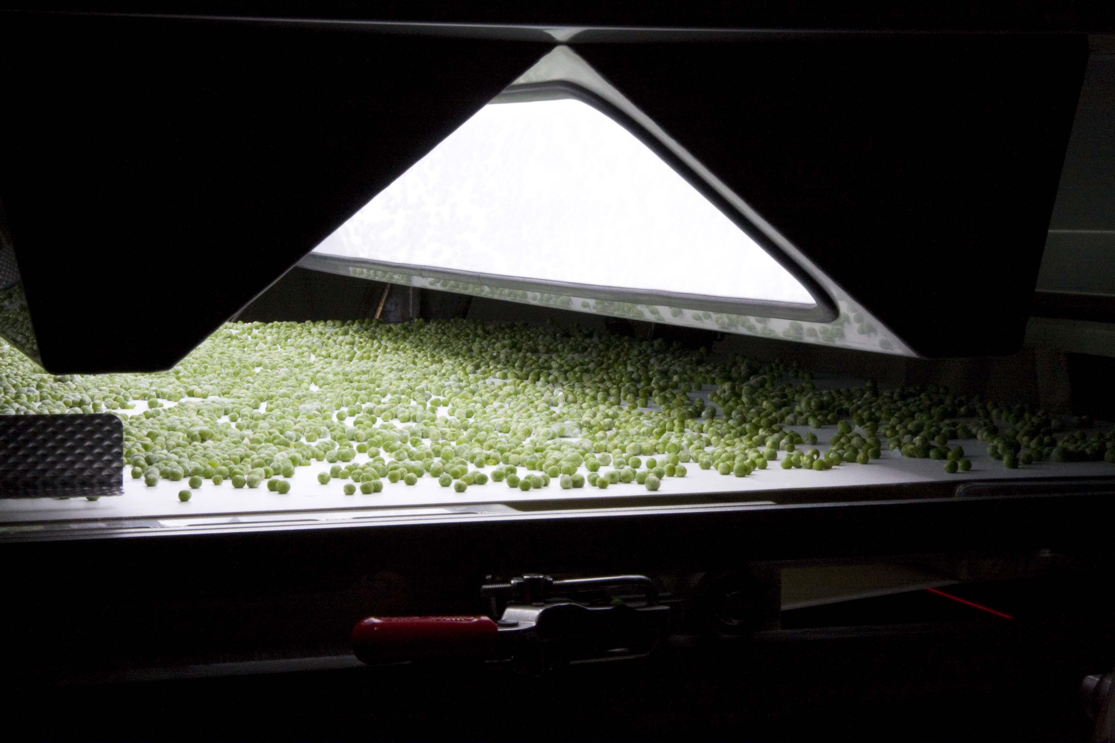 Manta Lighting System